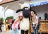 """""""Shaun the Sheep Land"""" at Skåne Animal Park"""