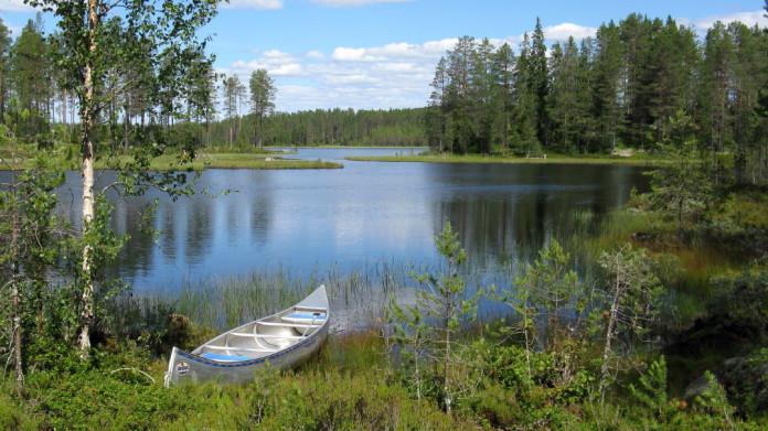 Activities in Sweden