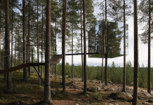 Tree Hotel, Harads, Lapland: Swedish architecture at the 2016 Nordic Pavilion in Venice
