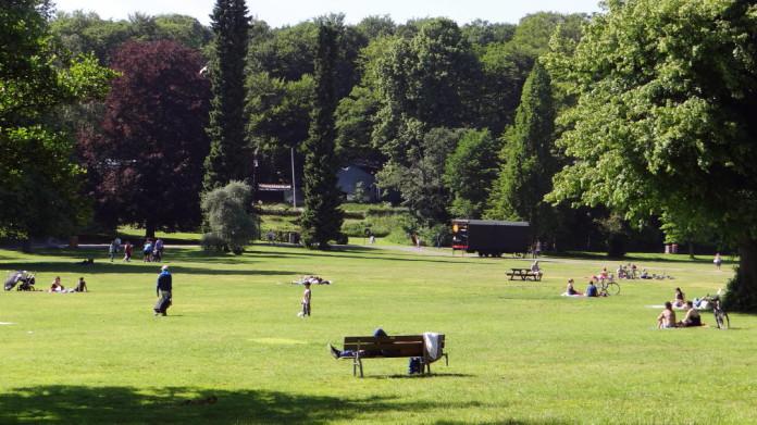 Slottsskogen in Gothenburg
